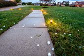 picture of storms  - Baseball size hail covering the ground after the storm - JPG