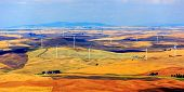 picture of wind-farm  - Wind turbines seen from the Steptoe Butte State Park lookout - JPG