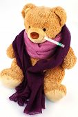 a bear plush with a thermometer in his mouth. symbolic photo for chill, flu and fever
