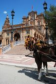picture of carriage horse  - Horse drawn carriage in the Plaza de Espana Seville Seville Province Andalusia Spain Western Europe - JPG