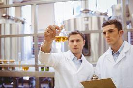 image of beaker  - Focused scientist team looking at beaker in the factory - JPG