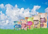 stock photo of pesos  - Mexican Peso bills growing out of grass in front of a beautiful blue sky - JPG