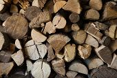 image of firewood  - Piles of firewood in a storage - JPG