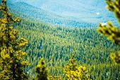 stock photo of monarch  - the colorado rocky mountains near monarch pass  - JPG