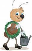 stock photo of ant  - Ant gardener carries the hose and watering can - JPG