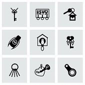 picture of skeleton key  - Vector Key icon set on grey background - JPG