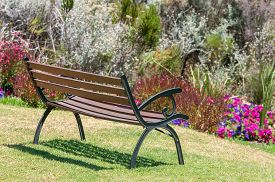 pic of fynbos  - Rustic bench between flowers near Sir Lowrys Pass - JPG