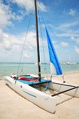 Hobie Catamaran Sailboat