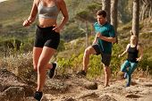 Постер, плакат: Fit Young People Running Up A Hill