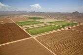 picture of pima  - A patch of green where farmland meets the Arizona desert - JPG