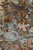 Rusty Metal Surface With Cracked Green Paint, Abstract Rusty Metal Texture, Rusty Metal Background, poster