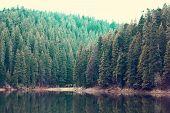 A Beautiful Mountain Lake. The Lake In The Carpathians. Lake Synevyr. poster