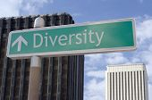 Diversity Ahead
