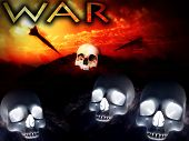 War Skulls