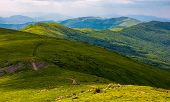 Path Along The Carpathian Dividing Ridge poster