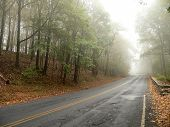 Mountain Road Vanishing In Rain