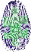 Fingerprint with Puzzle