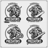 Lacrosse, Baseball, Cricket And Hockey Logos And Labels. Sport Club Emblems With Tiger. Print Design poster