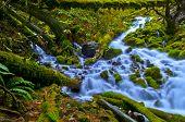 picture of upstream  - Vivid colorful falls upstream from Multnomah Falls - JPG