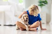 Child Playing With Dog. Kids Play With Puppy. poster