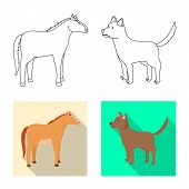 Vector Design Of Breeding And Kitchen Symbol. Set Of Breeding And Organic Vector Icon For Stock. poster
