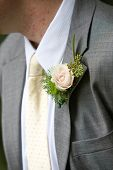 A grooms wedding boutonniere in pink and green. Lapel flower.