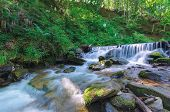Forest Stream With Cascade And Mossy Rocks. Beautiful Summer Scenery On Sunny Morning. Long Exposure poster