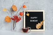 Happy Sunday Text On Black Letter Board And Bouquet Of Branches With Yellow Leaves On Clothespins In poster