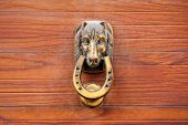 Old brazen door knocker