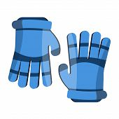 Lacrosse Gloves. Sport Gloves. Flat Cartoon Style Vector Illustration Icons. Isolated On White. Spor poster