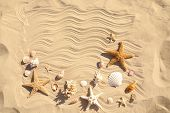 Starfishes And Seashells On Beach Sand With Wave Pattern, Flat Lay. Space For Text poster