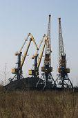 Coal Cranes