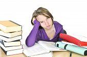 Teenage Girl Studying poster