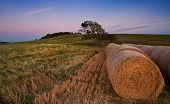 Hay bales in Summer sunset landscape