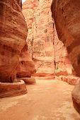 Rosy Red Walls Of The Siq Canyon, Leading To The Treasury In Petra