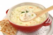 foto of clam  - New England clam chowder - JPG