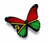 Vanuatu Flag Butterfly, Isolated On White