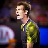 MELBOURNE - JANUARY 27: Andy Murray of Scotland in his loss to Novak Djokovic of Serbia in the 2013
