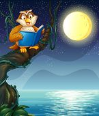 picture of storybook  - Illustration of an owl reading a book above a branch of a tree - JPG