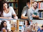 Montage of pictures showing various students with books in library