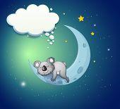 Illustration of a koala bear above the moon