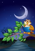 Illustration of an owl reading above a branch of a tree