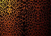 Постер, плакат: Леопард кожи