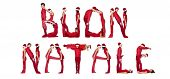 Elfs forming the phrase 'Buon Natale' isolated on white