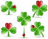 Vector Illustration Of Set Of   Shamrocks With Four Lucky Leaves Ladybug Isolated On White Backgroun