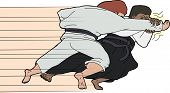 Fast Aikido Throw