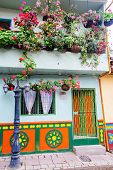 Colorful House And Flowers