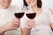 Mature Couple Drinking Red Wine