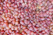 rose wine grapes juicy background
