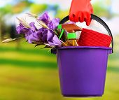 Housewife holding bucket with cleaning equipment on bright background. Conceptual photo of spring cl